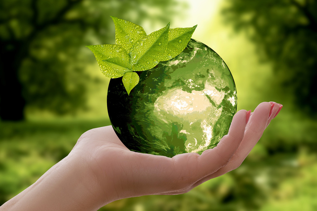 ecologia latina pulizie